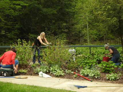 Weaver House Spring Planting